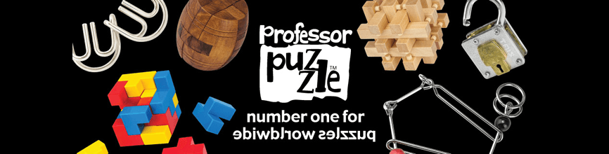 Professor Puzzle toys for children
